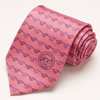 Promotional tie example 2