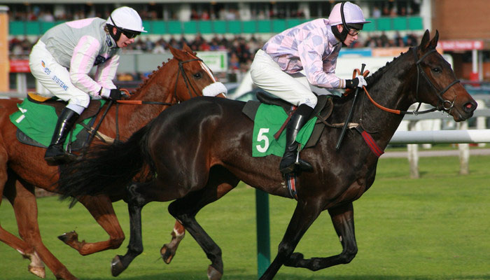 Horses racing in the Grand National